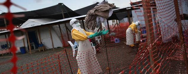Virus Ebola berpotensi masuk Indonesia