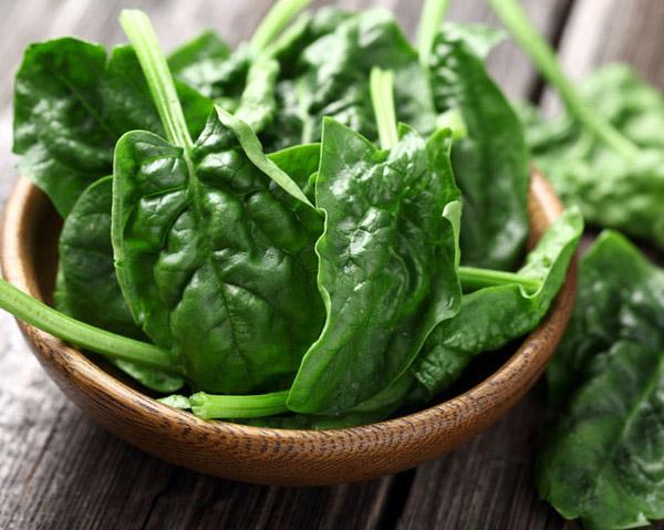 7 Makanan Yang Dapat Meningkatkan Kinerja Otak 1