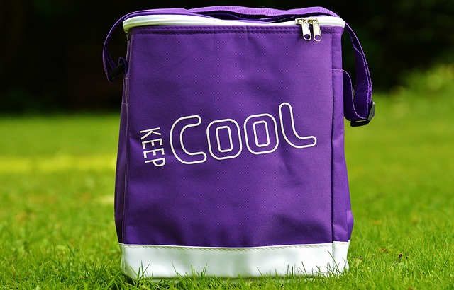 Cooler bag untuk menyimpan asi perah