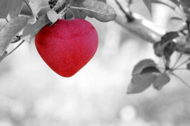 Cara mencegah Penyakit Jantung