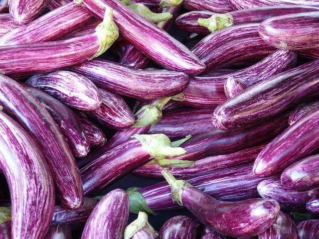 Khasiat terong ungu