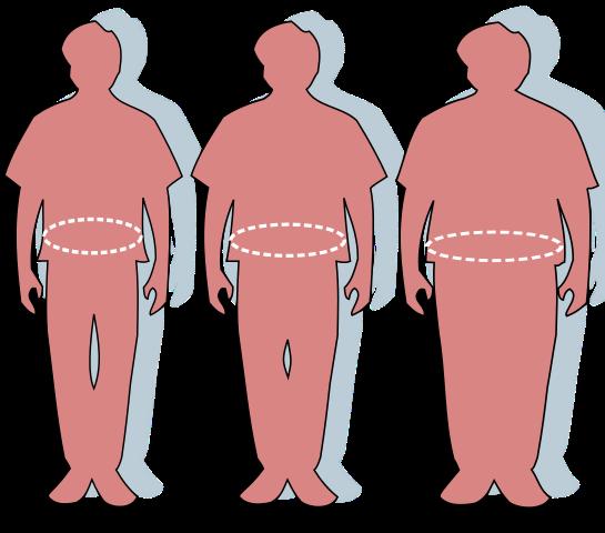 Kaitan antara obesitas dan memori otak dan cara menanganinya