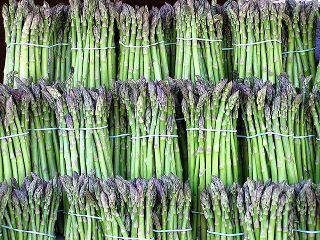 Manfaat tanaman asparagus