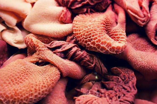 Makanan yang harus dihindari bagi penderita asam urat