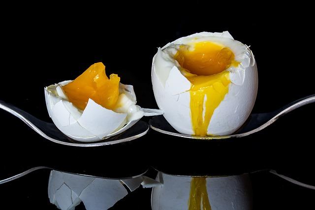 kuning telur tinggi kolesterol