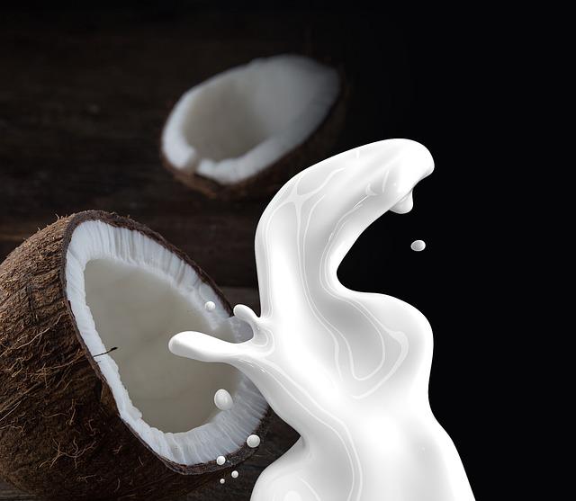 manfaat santan dan air kelapa