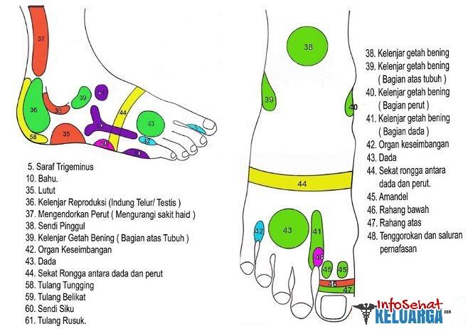 Titik refleksi pada kaki