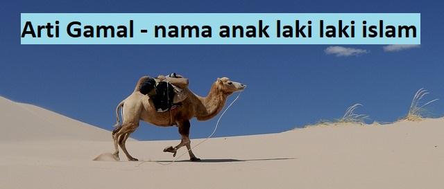 Arti nama anak laki laki islam